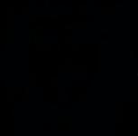 Taglio Siciliano Friseur Ulm Salonlogo